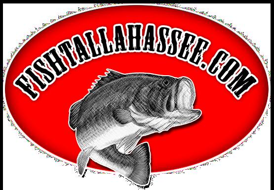 Fish Tallahassee